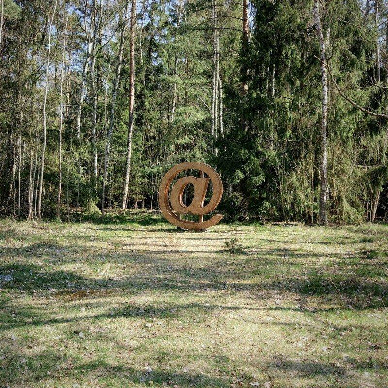 ТОП красивейших мест и событий для фотосъемки в России