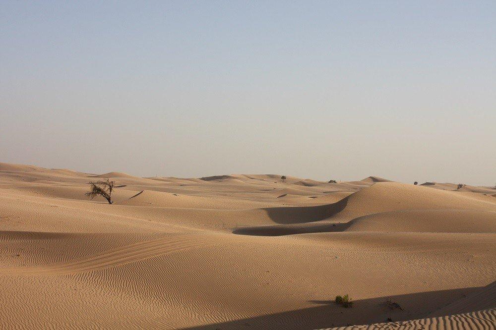 Abu Dhabi ИЛИ пустыня Абу Даби