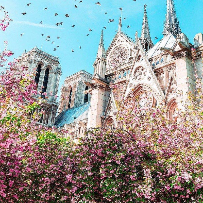 VMH и Kering  жертвуют на реконструкцию собора Парижской Богоматери 300 миллионов евро
